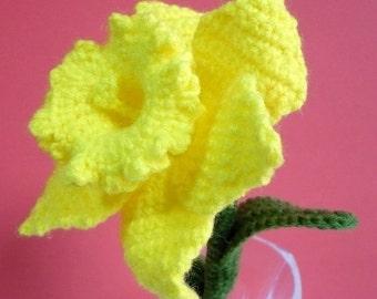 Flower Crochet Pattern Daffodil Crochet Pattern PDF Instant Download Daffodil Flower