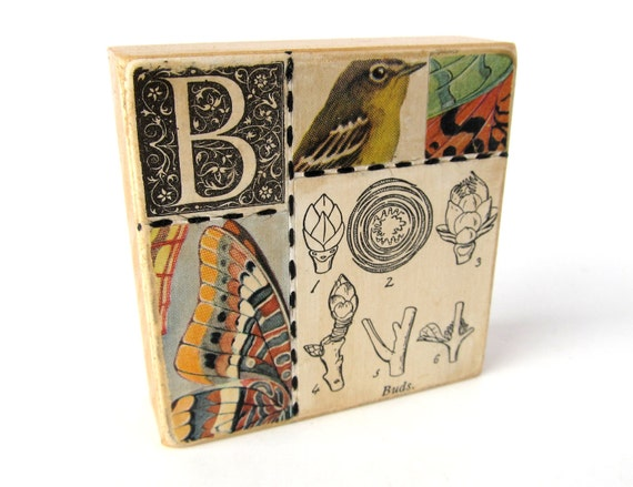 Buds - ART BLOCK - Original Mixed Media Collage