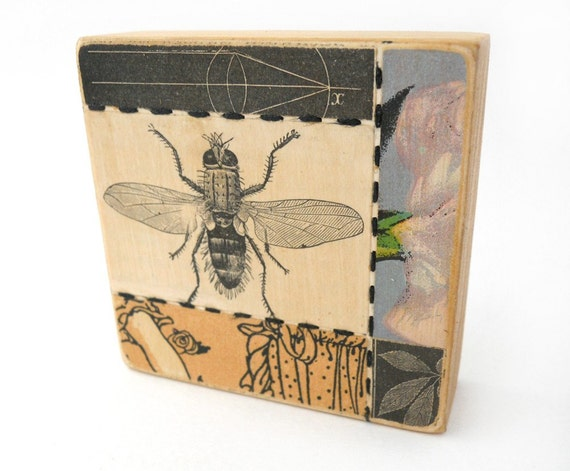 Fly - COLLAGE ART BLOCK - Original Mixed Media Collage