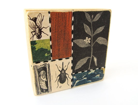 Insects - Collage ART BLOCK - Original Mixed Media Collage