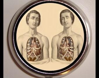 Cadaver Dead Twins Pill Box Pill Case-Holds Pills, Vitamins, Guitar Pics, and more