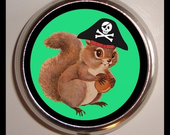 Pirate Squirrel Pill box Pillbox Case Holder for Vitamins Drugs Birth Control Kawaii Kitsch Woodland Creature in Pirate Hat Trinket Box