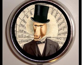 Baboon Monkey Man Pill Box Case Victorian Steampunk Inspired Surreal Art