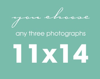 Any 3 11x14 Fine Art Photography Collection, You Choose, Custom Wall Art Home Decor Gift Set