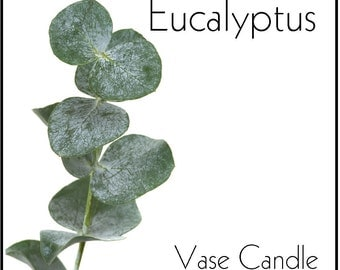 Eucalyptus Vase Candle 2.8 oz Wax Melts - Highly Scented, Hand Poured Fresh, Premium Paraffin Soy Blend Wax Tarts, 25 Hour, Color Free