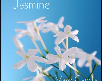Jasmine Vase Candle 2.8 oz Wax Melts - Highly Scented, Hand Poured Fresh, Premium Paraffin Soy Blend Wax Tarts, 25 Hour, Color Free