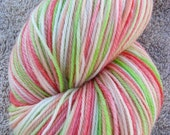 LABOR DAY SALE - Melon Slices Hand Dyed Superwash Merino Sock Yarn