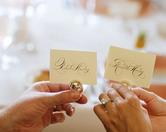 Place Card Addressing, Escort card, Wedding Calligraphy, Hand written, Reception and Seating