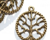 Tree of Life Pendants charms  Antique Brass  Bronze Lot of 4  -C11AB
