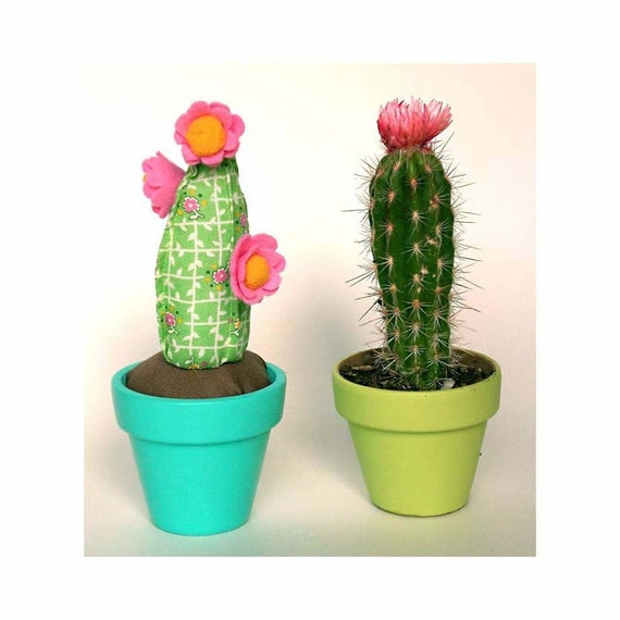 prickly pear pin cushion