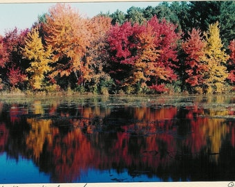 488 Photo Card Cole Pond Boxford, MA Foliage Fall Reflections