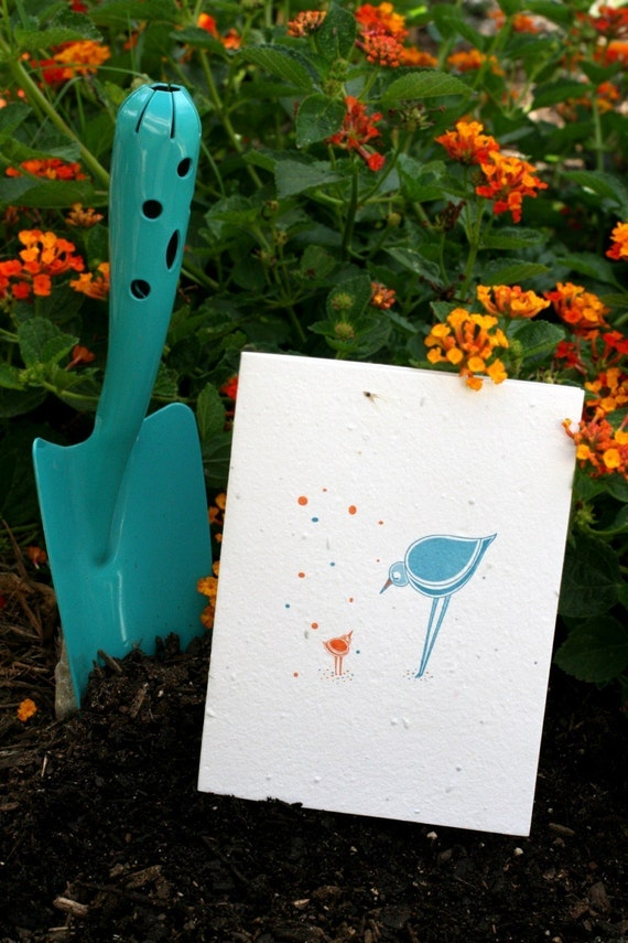 Bird Talk- Letterpress Plantable Card