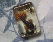 Black and Gold Butterfly Koi Resin Cab