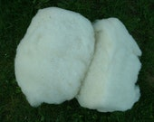 White Carded Wool Corridale x Colombian One pound  26 Micron Waldorf Doll Stuffing Product of the USA Super Clean