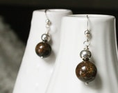 Lisa - Rich Shiny Golden Brown Bronzite and Sterling Silver Earrings
