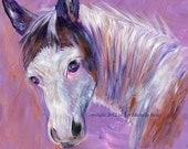 Medicine Hat Horse, Art Print of Acrylic Painting