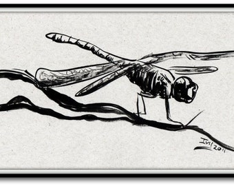 Dragonfly on Branch, Ink Painting Art Print