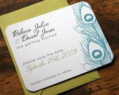 Peacock Feathers Save the Date-25
