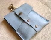 Light blue clip card case