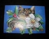 Original OSWOA, Altered Art, Collage, Christmas Cat