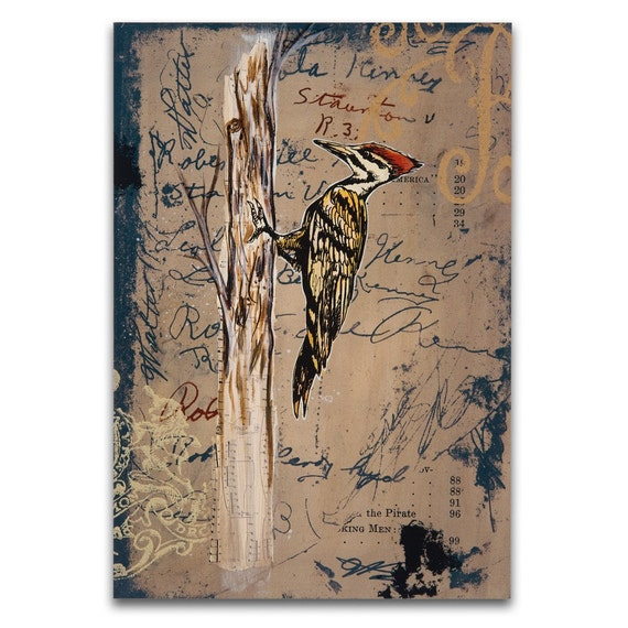 French Country Woodpecker Art Print on Wood, Natural History of Virginia Figure 1 BOX PRINT reproduction