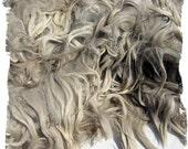 Suri Alpaca Fleece - unwashed from beige Frankie - 2 pounds reserved for Wayne
