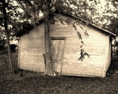 8 in.x10 in. Print - Grandmother's Garage - FREE SHIPPING within Continental US