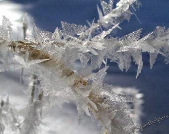 Winter Crystals, Ice Magic, Snow Crystals, Snow Flake Wonder, Macro Fine Art, Photograph Nature Art, Snowflake, Photograph or Greeting card