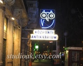 Owl Neon Sign in Budapest Hungary - 5 x 7 Limited Edition Photograph
