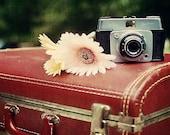 Fine Art Photography Camera & Suitcase 8x8 Vintage Fine Art Photo