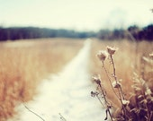 Fine Art Photography Winter Prairie Path 8x10