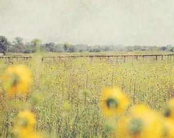 Fine Art Photography Textured Wetland 8x8 Print