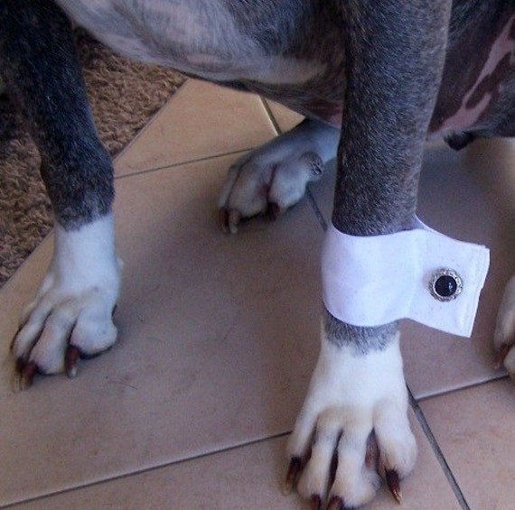 Formal Dog Cuffs: for that special event or wedding miascloset