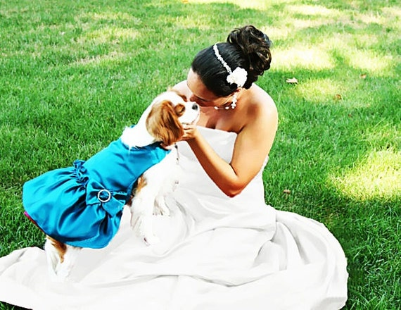 Dog Pet Dresses: Custom Wedding Colors dog bridal wear Match Your Wedding Colors dog clothes photo prop event photos Chihuahua Yorkie Poodle