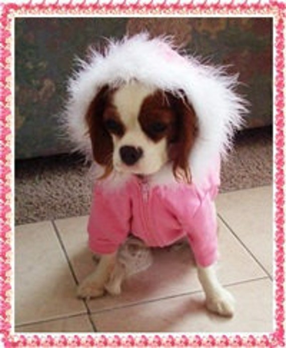 Dog Hoodie: with Zipper with your choice of Crystal  Designs XLarge