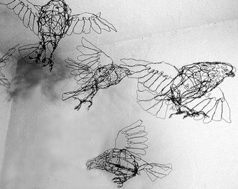 Flock of Pigeons-individual Bird--Wire Drawing Sculpture art