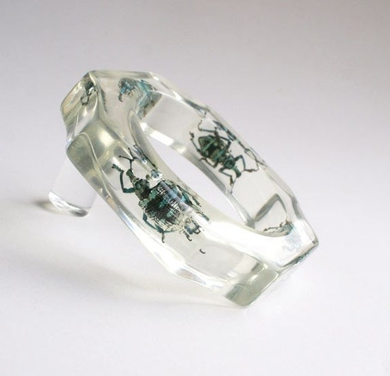 Scalloped clear lucite bracelet with real insects