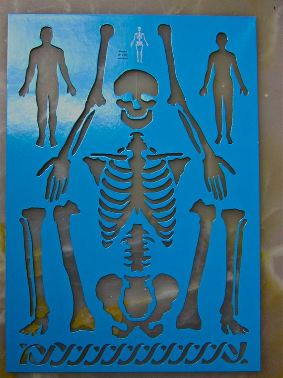 skeleton human body arms legs bones skull art stencil