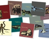 If you were... set of 10 different animal cards