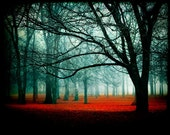 enter - fog red fairytale magical autumn forest - contemporary, decorative print 8 x 10