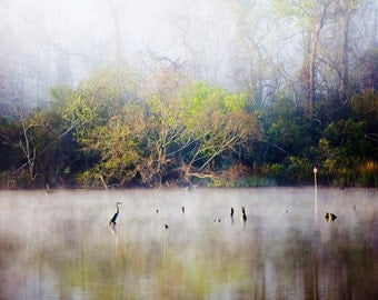 Heron, Landscape Photography, Nature Photos, Tranquil Decor, Texas Gulf Coast Bayou, Fog, Mist, Peaceful