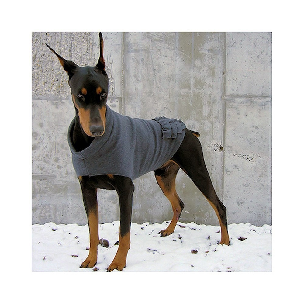 Where Can I Find Dog Sweaters