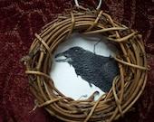 Miniature Original Drawing- Raven
