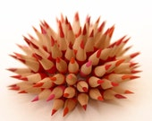 Custom Pencil urchin