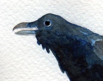 Watercolor Painting: Watercolor Illustration Bird -- Mini Art Print -- Thieving Raven -- ACEO Print