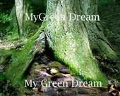 Mossy Wood Photo Notecard