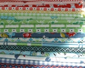 DS Quilts (by Denyse Schmidt) 1/2 yard bundle