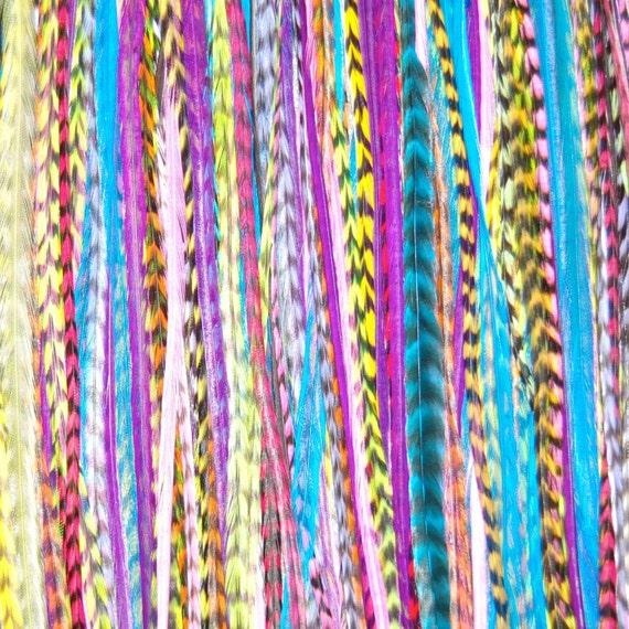 Feather hair Rainbow 3 Feather Hair Extension LONG Loose - Salon Grade Whiting Feathers : FREE micro link clamp