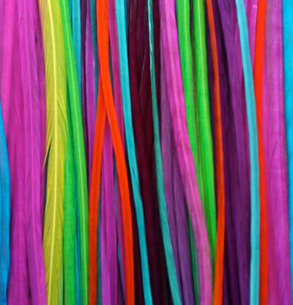 SPECIAL Last Stock MEDIUM Solid Rainbow 6 Feather Hair Extension - Salon Grade Whiting Feathers : free micro link clamp