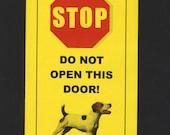 Dangerous Inside Jack Russell Terrier Inside -  Has Killed Squeaky Toy